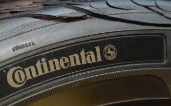 В Continental сделали покрышки из одуванчиков